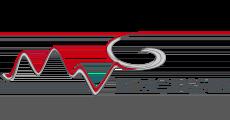 Logo M.V.GEISSER